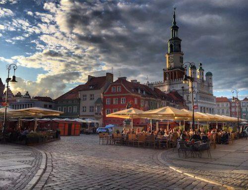 Sklepy ze zdrową żywnością Poznań